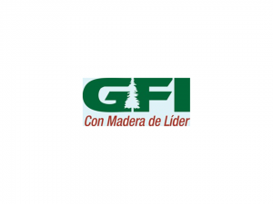 GFI_Stand Depot